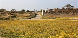 Ancient city of Salamis in spring