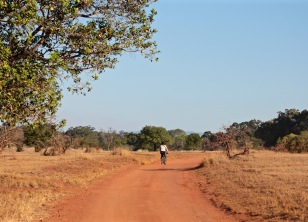 Cycling in Mlilwane Wildlife Sanctuary