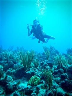 Diver near Caleta Buena Playa Giron Cuba