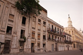 Tree growing inside a crumbling building in Havana