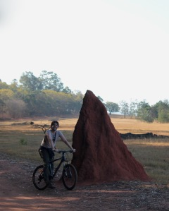 Biking past a giant termite heap in Mlilwane Wildlife Sanctuary