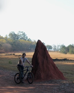 Biking past a giant termite heap in Mlilwane Wildlife Sanctuary