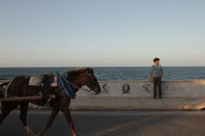 Horse on the Gibara Malecon