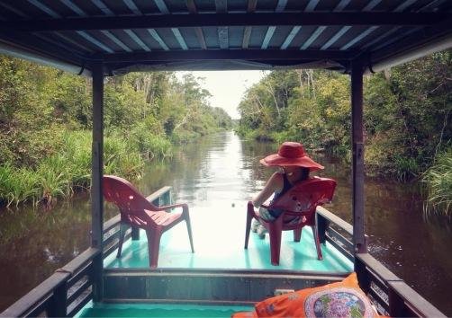 River cruising on a klotok in Tanjung Puting Kalimantan