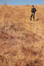 Hiking through dry grass fields in Malolotja Nature Reserve