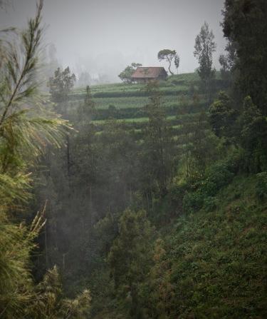 Misty mountain scene near Comoro Lawang East Java
