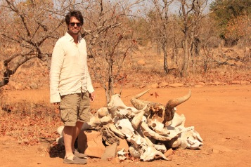 Pile of old bones near Machampane Wilderness Camp