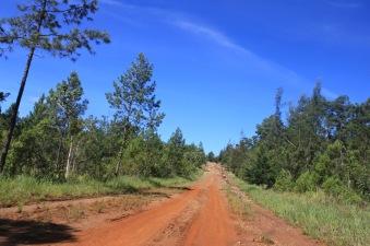 Parque Nacional la Mensura road
