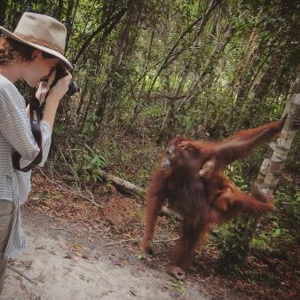 Girl photographing orang utans in Tanjung Puting Kalimantan