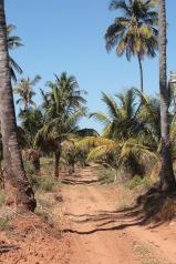 Dunes de Dovela access road