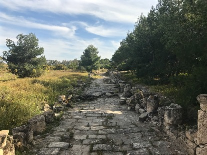 Roman road in the ancient city of Salamis Northern Cyprus