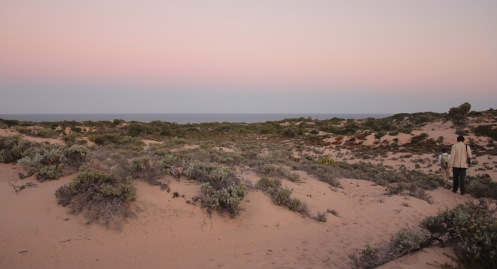 walking through the Mozambique dunes at sunset