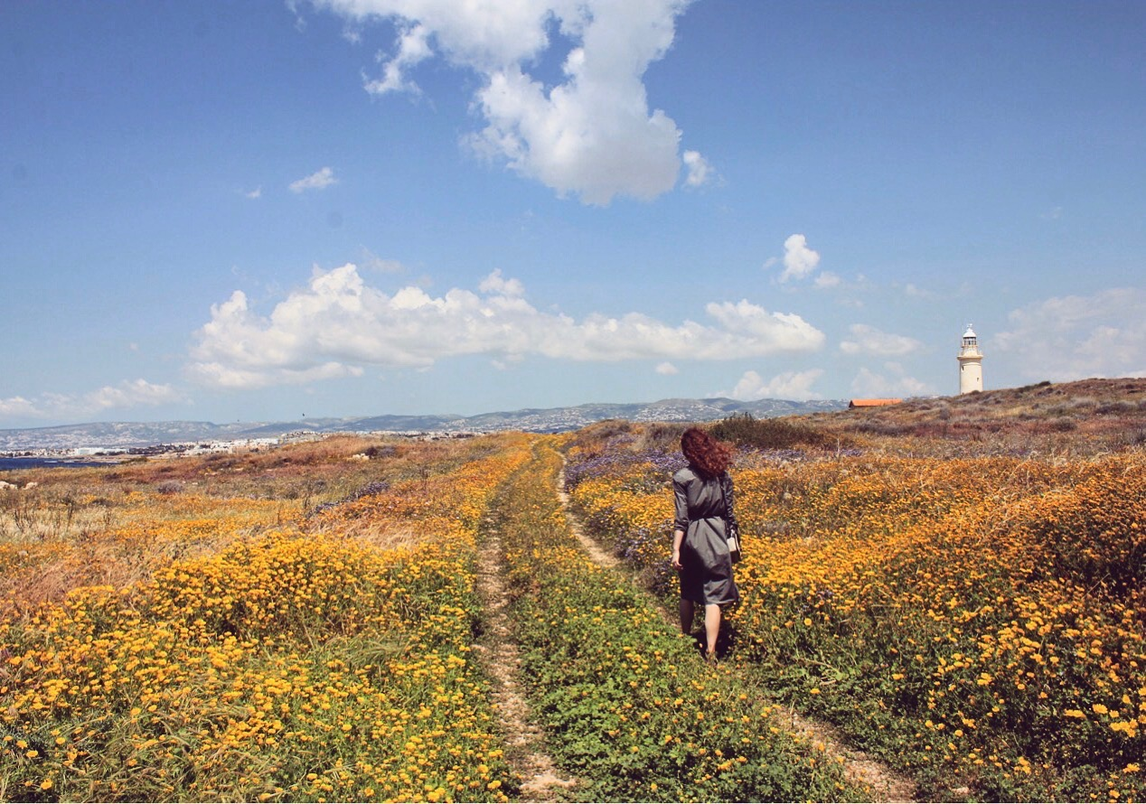To the lighthouse in Paphos archeological park covered with spring flowers