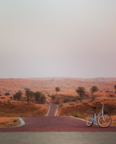 Bicycle path in the Al Wadi desert