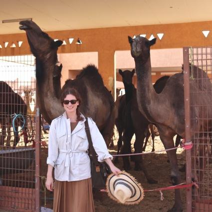 Girl with dromedaries at the Al Ain camel market