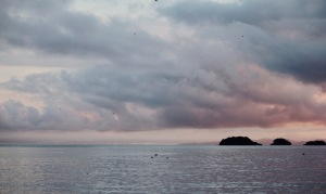 Sunset in Coiba during the migration of Urania swallowtail moths