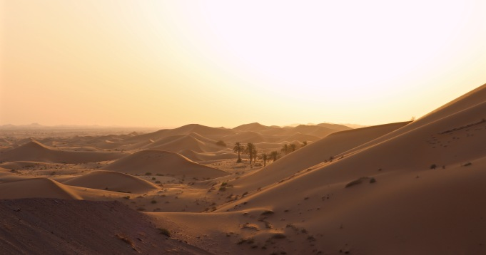 Panoramic view over the sand dunes at Telal, Abu Dhabi