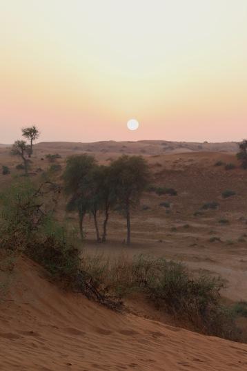 Sunset over Al Wadi desert RAK