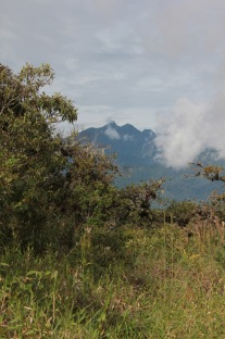 Volcan view Panama