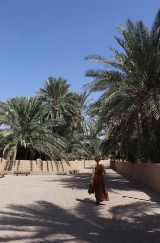 Al Ain Oasis path