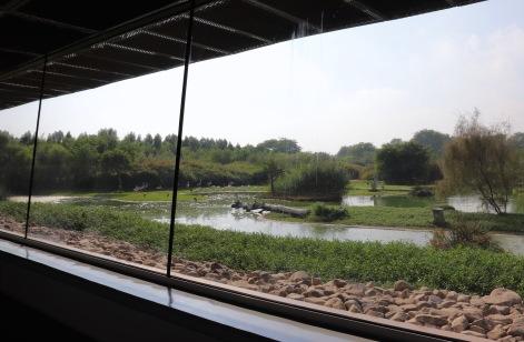 Wasit Wetland Centre observation corridor