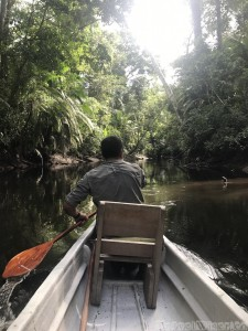 Paddle canoe, Napo Wildlife Center Ecuador