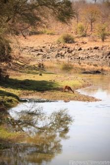 Machampane river