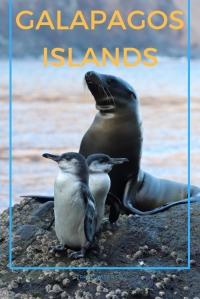Galapagos Islands itinerary