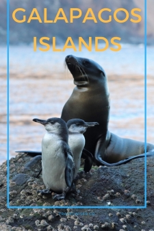 Galapagos Islands itinerary