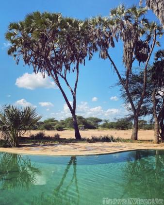 Saruni Rhino pool