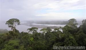 Napo River, Yasuni National Park Ecuador