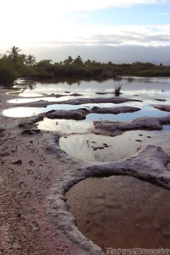 Pozo Salinas, Isla Isabela Galapagos