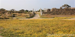 Ancient Salamis covered in spring flowers