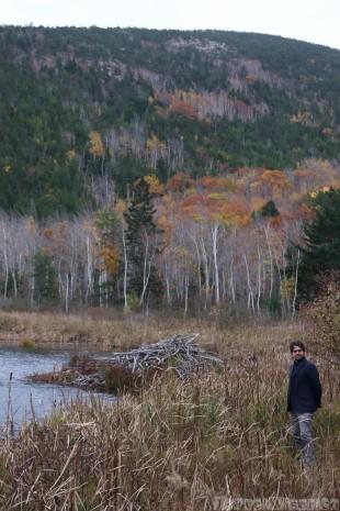 Beaver Dam Pond, Acadia National Park Maine