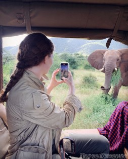 Taking an iPhone picture of an elephant on a game drive in Samburu