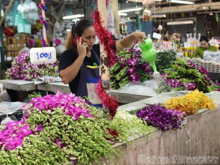 Flower seller watering her orchids at Pak Khlong Talat Bangkok