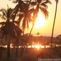 Mozambican sunset through the palm trees