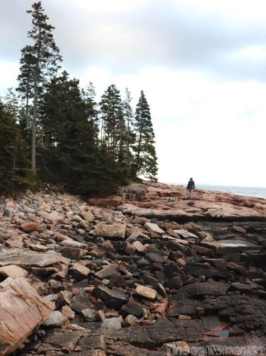 Rocky beach, Wonderland trail Acadia National Park