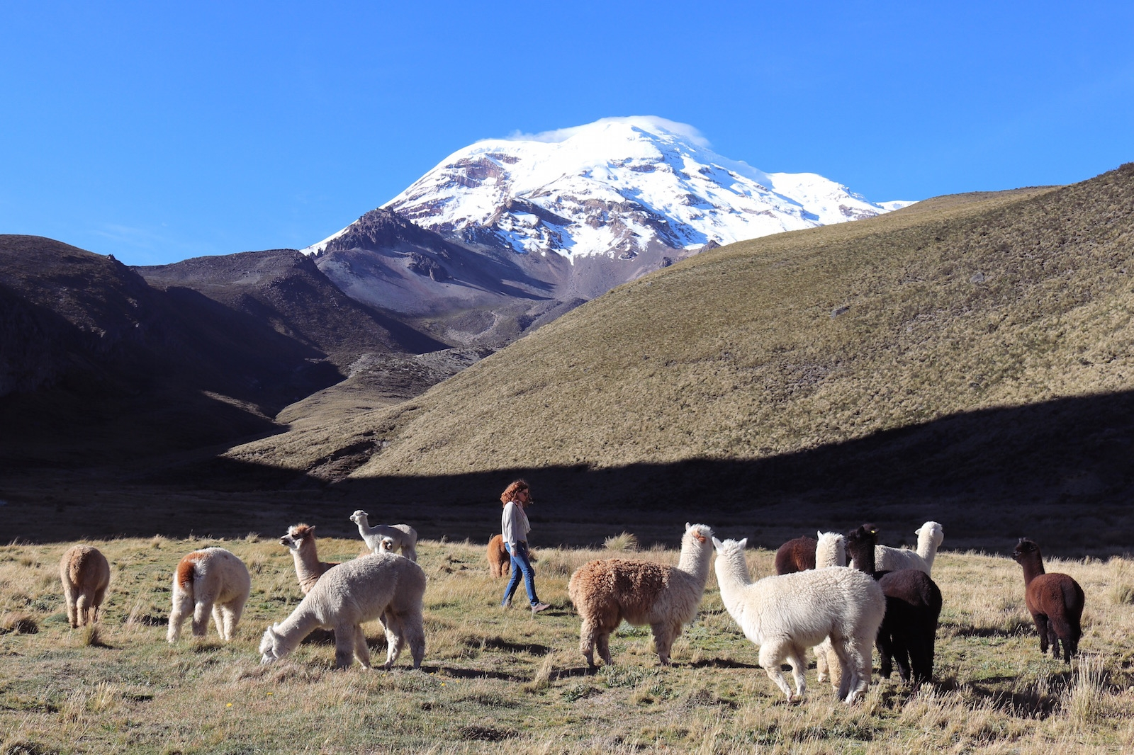 Travel Wiser Ecuador highlands road trip itinerary