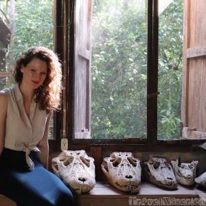 Caiman skulls at Caiman House Guyana