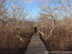 San Cristobal Interpretation Center trails