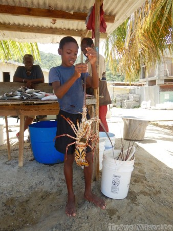 Boy with lobster in the fishing village of Charlotteville Tobago