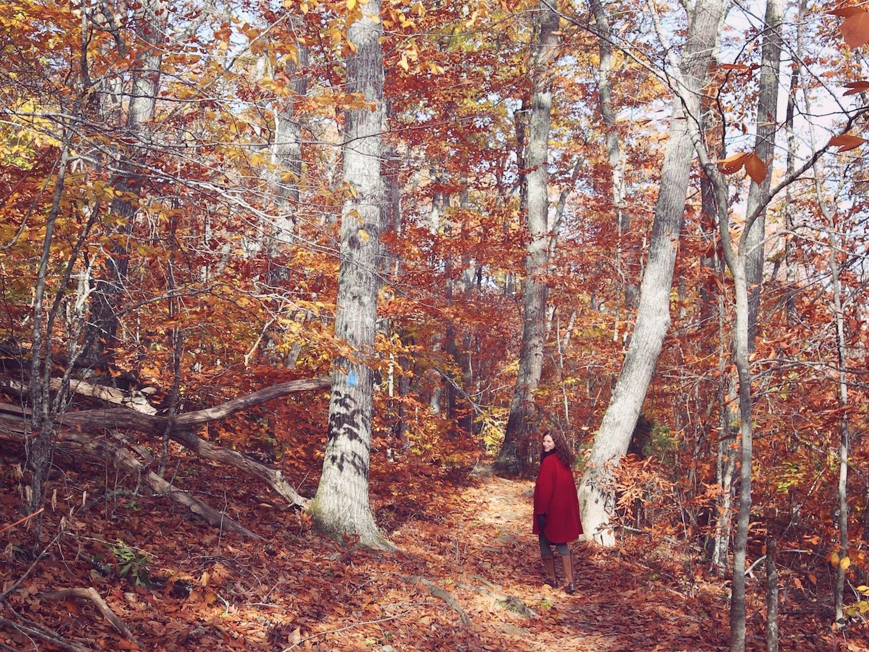Maine fall road trip Travel Wiser