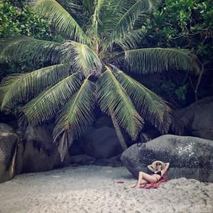Under the palm trees at Anse Georgette Beach, Praslin Seychelles