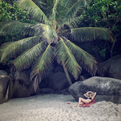 Under the palm trees at Anse Georgette Beach, Praslin Seychelles