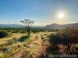 Samburu National Reserve, Northern Kenya