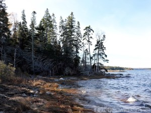 Blagden Preserve, Mount Desert Island Maine