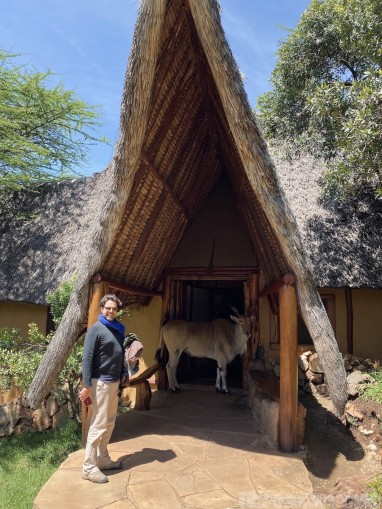 Saruni's pet eland blocking the entrance