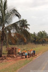 Buy oranges and cashew nuts along road 1