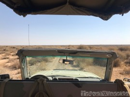 Sahuaro Wildlife Reserve safari